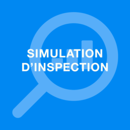 Simulation d'inspection